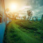 En rejse til Sri Lanka du aldrig glemmer