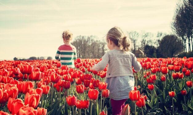 Sådan får du dine børn med ud i naturen